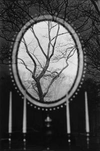 Eva Rubinstein, fotografia