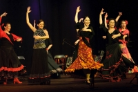 Spektakl flamenco